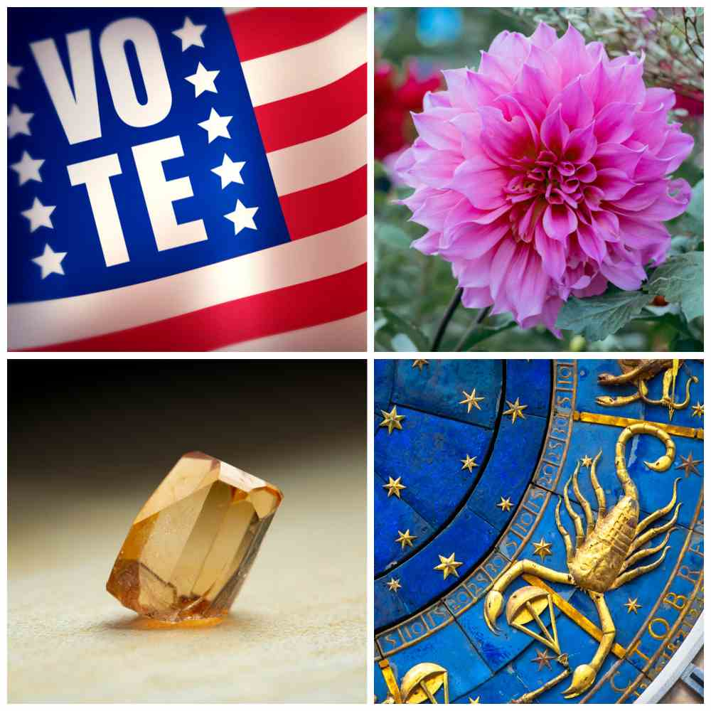Vote sign, chrysanthemum, topaz and scorpio zodiac sign in a collage.