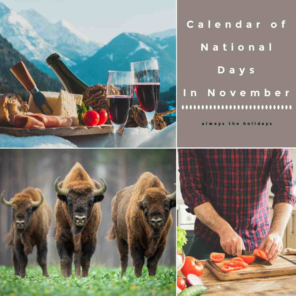 Bison, wine in the Alps and man cooking with words, Calendar of National Days in November.