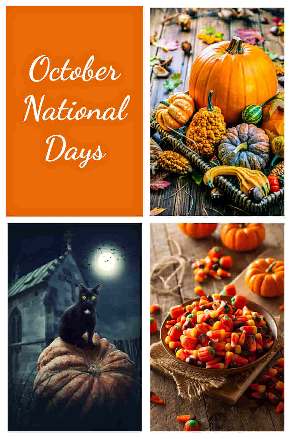 Pumpkins, Black cats and candy corn with words reading October National Days.