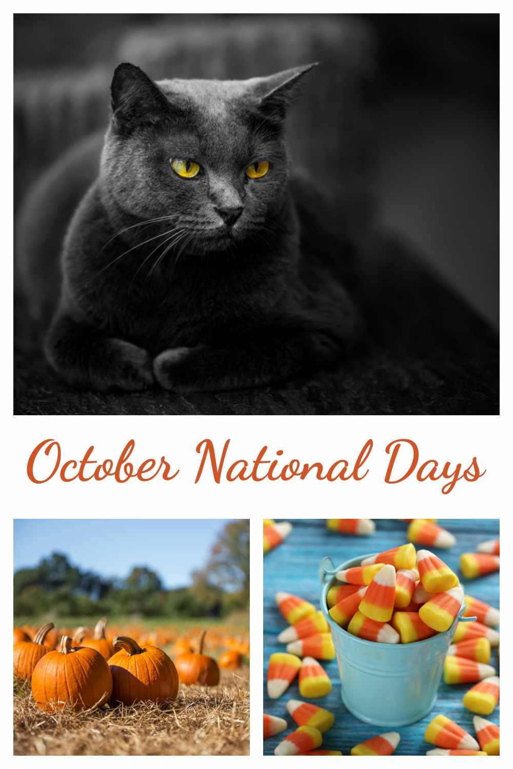 Black cat, pumpkins and candy corn in a collage with words October National Days.
