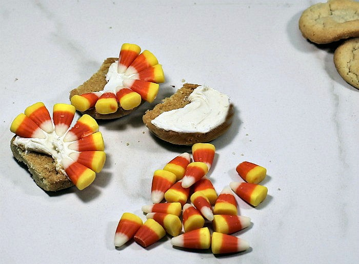 Using candy corn to make turkey feathers on frosted and trimmed sugar cookies.