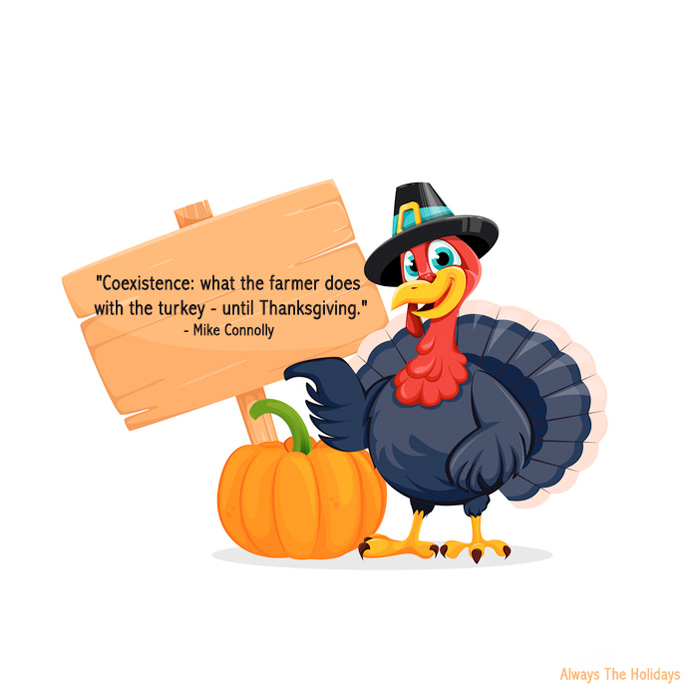 A turkey wearing a pilgrim hat holding a sign with a funny Thanksgiving sayings quote on it.