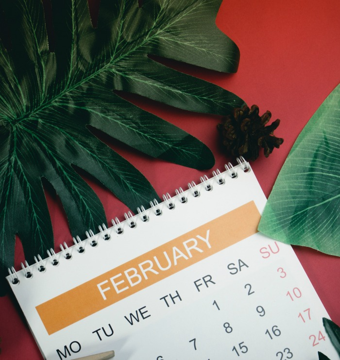 February calendar and leaves on a red background.