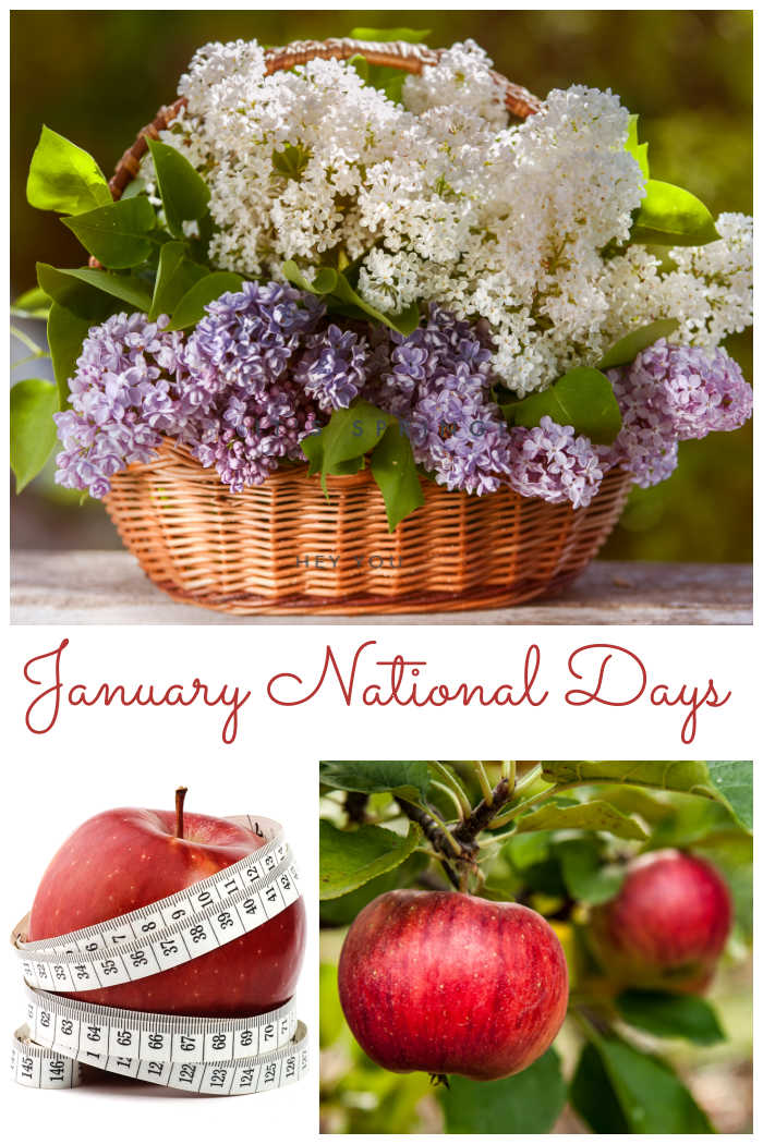 """Flowers in a basket, apple with tape measure and apples in a tree with words reading """"January National Days."""""""