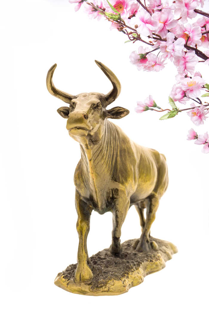Gold ox with pink cherry blossoms.