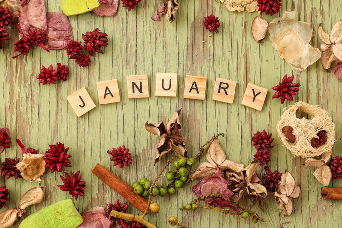 """Scrabble tiles spelling out the word """"January"""" in honor of the national days of January."""