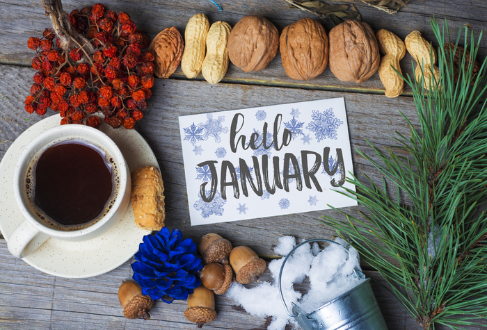 """A card that says """"hello January"""" arranged with a cup of coffee, fir bough, nuts and cranberries to celebrate the national days in January."""