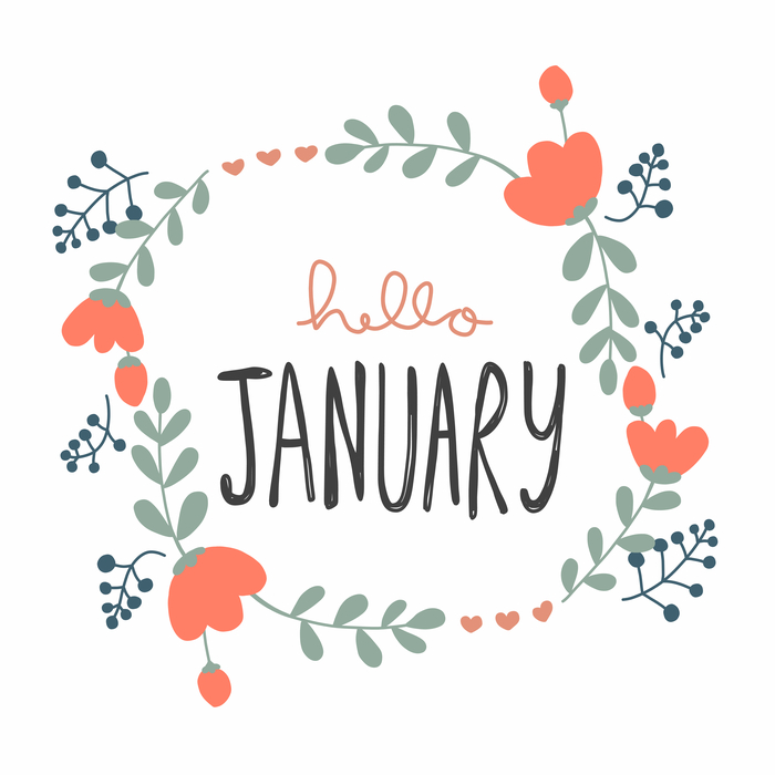 """A graphic that says """"Hello January"""" with January's birth flower the carnation around it."""