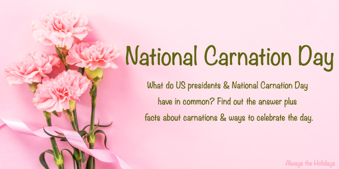 Pink carnations on a pink background with a text overlay about National Carnation Day and carnation facts.