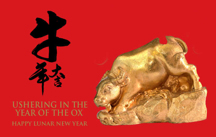 Gold ox on a red blackground with Chinese characters and words reading Year of the Ox - Happy Lunar New Year.