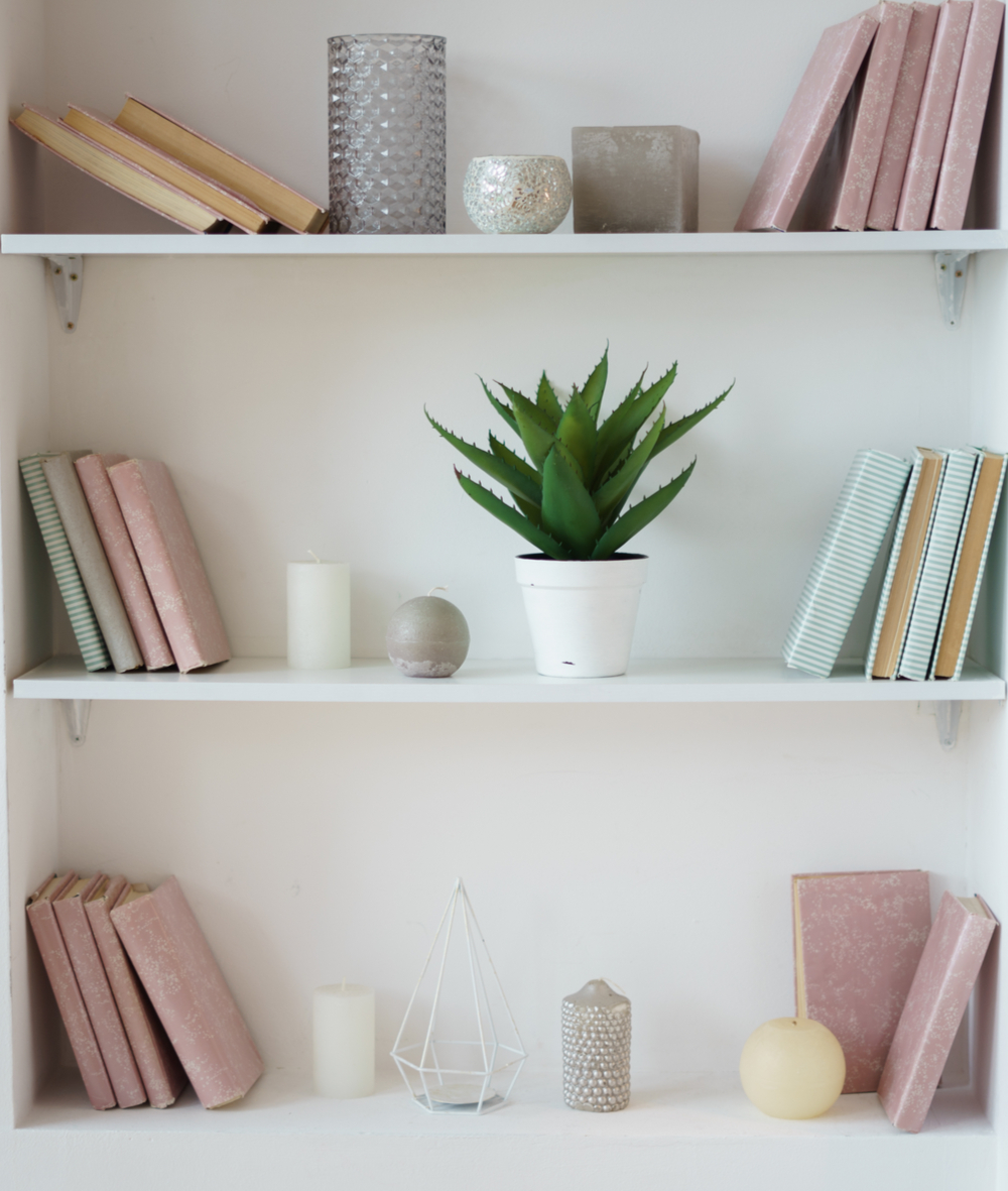 An example of how to organize a bookshelf, with minimal books, a plant, and a couple of other decor pieces.