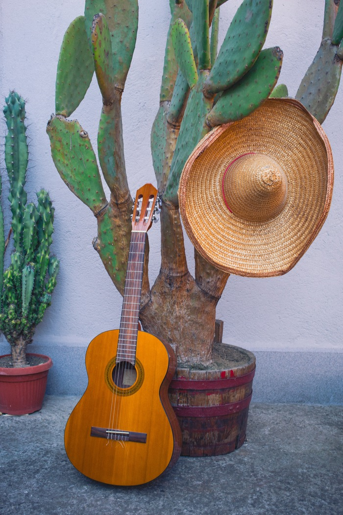 A southwest guitar home decor set up, with an acoustic guitar and sombrero leaning against a cactus.