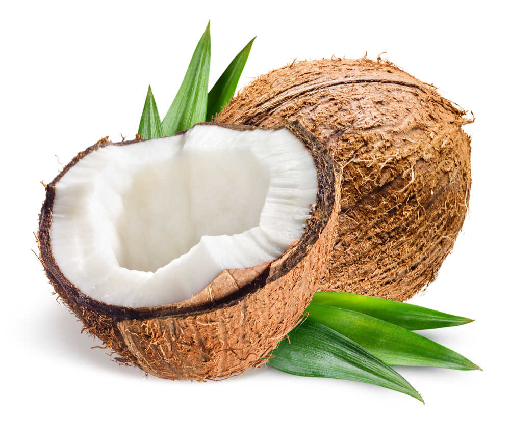 A coconut cut in half next to a whole coconut and coconut leaves on a white background.