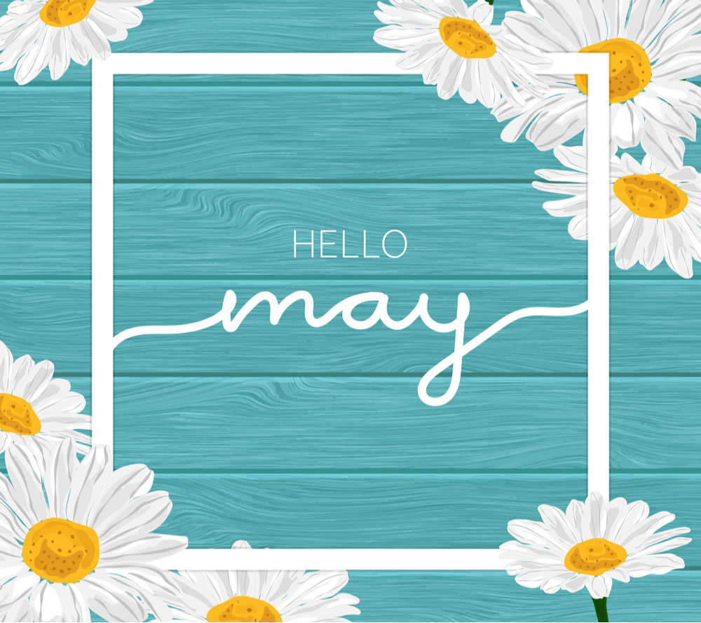 """A teal blue background with text that reads """"hello May"""" surrounded by a white square and daisies."""