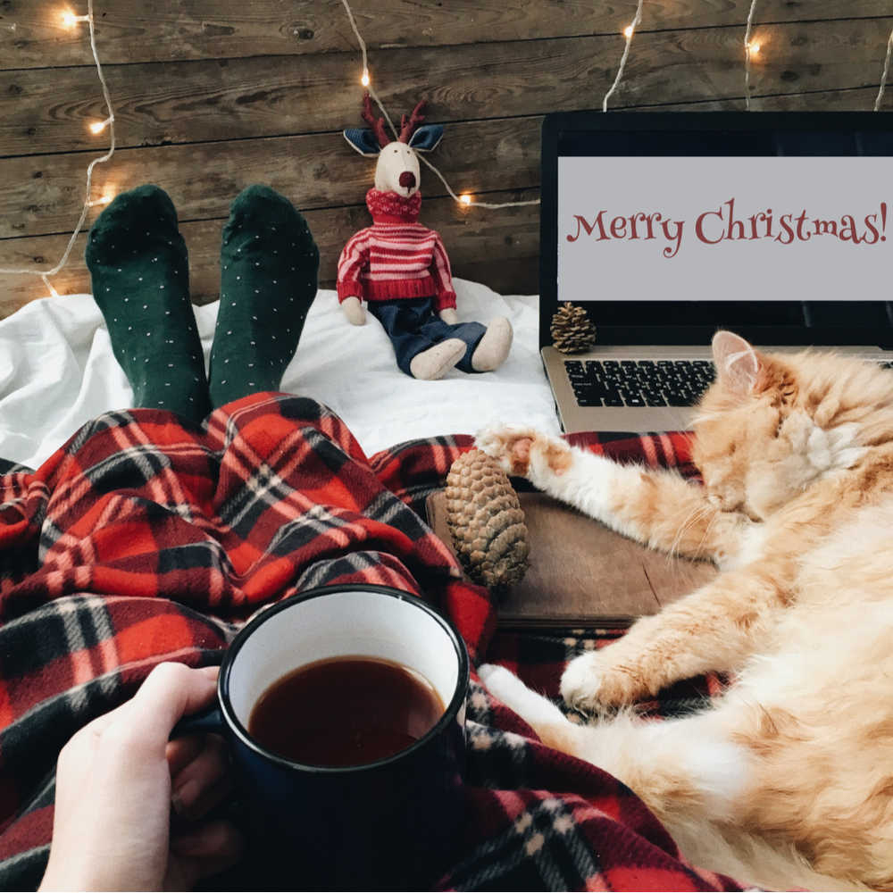 """A person wearing plaid holding a cup of coffee while sitting on a bed next to an orange cat watching a laptop screen that reads """"Merry Christmas""""."""