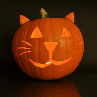 A cat jack o lantern lit up with ears against a plain black backfround.